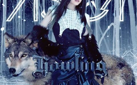 [201104]TVアニメ『魔法科高校の劣等生 来訪者編』OPテーマ「Howling」(BD付期間生産限定盤)/ASCA[320K]